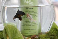 Menu de mariage aquarium
