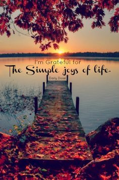 I am grateful for the simple joys of life <3