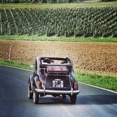 Fiat 500 in Chianti [ Original pic @marziaver ] #tuscanygram #tuscanygramers