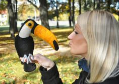 Needle felted toucan bird zoo black yellow white by IrraNellie, $70.00 Needle Felted Animals, Felt Animals, Needle Felting, Roosters, Cool Pets, Felt Toys, Teddy Bears, Three Dimensional, Gifts For Dad