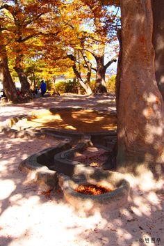 경주역사유적지구[Kyongju Historic Areas] - 포석정