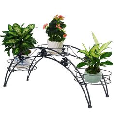 Arch Metal Potted Plant Stand Wrought Iron Indoor Yard Garden Decor Plant Rack…