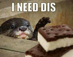 I need dis.. <3 Follow me!!