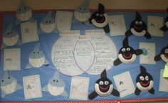 Adorable crafts with venn diagram for comparing sharks and whales