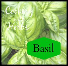 Part 4 in a six part series on cooking with herbs. This one is all about Basil. How to grow, harvest and cook with it. ~gardenmatter.com
