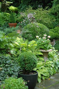Now that's a shade garden! The pots add the perfect suggestion of restraint and formality.