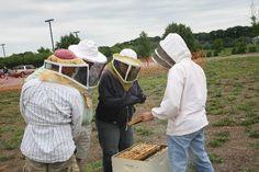 Regional Beekeeping Associations