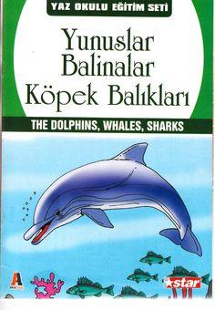 Yunuslar,balinalar,köpek balıkları Dolphins, Shark, Movie Posters, Film Poster, Popcorn Posters, Sharks, Film Posters, Posters