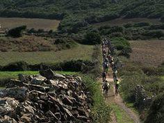 Bikers en Ruta Menorca, Vineyard, Country Roads, Outdoor, Paths, Adventure, Sports, Outdoors, Vine Yard