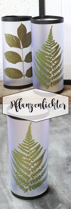 Pflanzenlichter mit echten Pflanzen