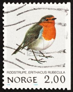 Norway, European Robin, Bird, ca 1982