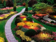 Butchart-gardens-flowers.jpg (640×480)
