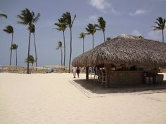beach bar at Ocean Blue and Sand Resort - Yup, I will be spending time here in March...