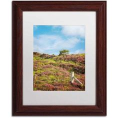 Trademark Fine Art Moorland's Color Canvas Art by Philippe Sainte-Laudy, White Matte, Wood Frame, Size: 11 x 14