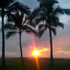 Sunset between Trees Photo by: Maki'ilei (Watchu Like)