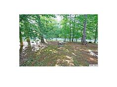 Beautiful outdoor wooded area, fenced in for Charlie!