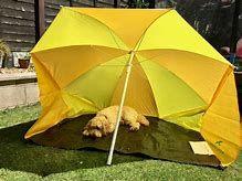 Bildergebnis für Easy Camp Coast Beach Tent