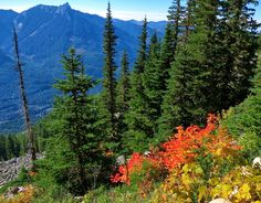 Pacific Northwest Seasons: Great Northwest Fall Hikes: A Few Favorites