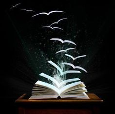 Books, Page Birds