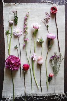 picking random flowers to create a simple wild-flower bouquet