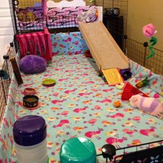 """C C cage for my little piggies. This side is called """"The Bunny Ranch"""" where all the girlies live. It is 7 X 3 ( X with a loft. The Dude Ranch is attached but partitioned and brings its total length to 10 X 3 ( X Guinea Pig Care, Guinea Pigs, C&c Cage, Pig Ideas, Dinner Dates, Pig Stuff, Animal House, Hedgehog, Beautiful Places"""