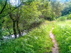 Caminhada pela Ecovia do Vez entre Loureda e Sistelo Arcos de. Paisagens de cortar a respiração beleza sem igual. E um rio sempre límpido.