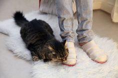 Designer Möbel für Katzenbesitzer – Cat-Man-Doo Serie | Möbel ...