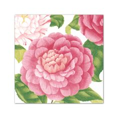 Camellias Cocktail Napkins