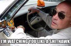 Stream TOKYO DRIFT by Jokken from desktop or your mobile device Trailer Park Boys Quotes, Nurse Jackie, Meme Pictures, Good Humor, Laughing So Hard, Picture Quotes, Funny Memes, Funny Shit, Funny Stuff