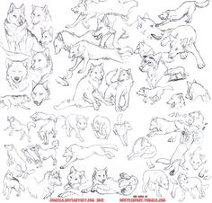 Huuuuge file, download to see the full view. I wanted to practice wolves a bunch because I think I got way too comfortable in my style and my wolves started to feel stiff and started looking like d...