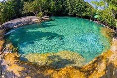 Emerald pool Krabi Thailand