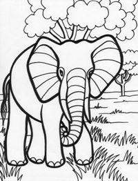 Planse de colorat animale salbatice, Elefant Elephant