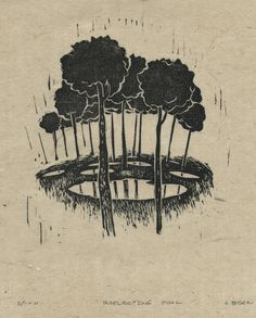 Jonathan Bean / Linocut / Printmaking / Trees / Narnia The Magicians Nephew, Deep Sea Creatures, Texture Images, Chronicles Of Narnia, Stencil Painting, Word Art, Art Tutorials, Printmaking, Cair Paravel