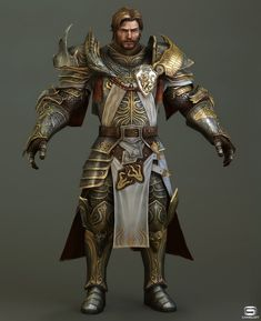 49 Best Male Human Paladin Images In 2019 Medieval Fantasy