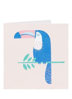Childrens Books | Toucan Card | Seed Heritage