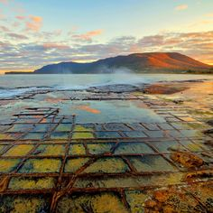 Eaglehawk Neck, Eaglehawk Neck, Australia - The Tessellated pavement at Eaglehawk Neck in Tasmania is a really unique spot! Believe it or not this is all natural!