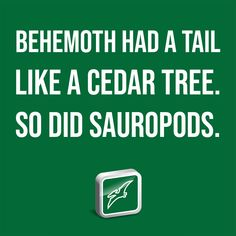 """Behemoth had a tail like a cedar tree. So did sauropods. It was """"the first of the ways of God"""" (Job 40:19)—first in size among all the animals He made. In His discussion with Job, God pointed to this animal's sheer immensity, showing how much more immense its Maker God is. Institute For Creation Research, Genesis Creation, University Of Liverpool, Neck Bones, Cedar Trees, Dinosaur Fossils, Stuff To Do, Sentences, Discovery"""