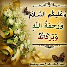 Islamic Images, Islamic Art, Salam Image, Hi Images, Assalamualaikum Image, Muslim Quotes, Islamic Quotes, Beautiful Rose Flowers, Quran Verses
