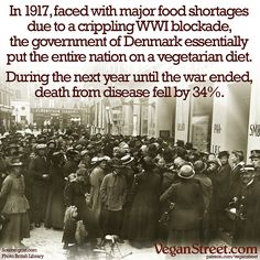 In World War I, the British launched a naval blockage against Germany and Denmark, cutting off all grain imports. The Danish government decreed that all grain used to feed animals was now needed to feed people. Not only did this reallocation of grain save the population from starvation, but everyone became healthier without the animal protein and death from disease was reduced by more than a third. http://veganstreet.com/dailymeme-6-22-16.html