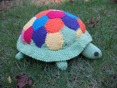 Patchwork Tortoise