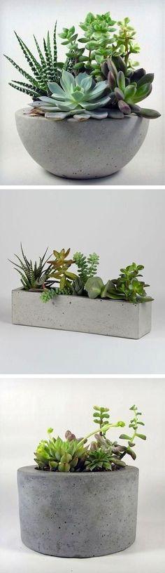 Concrete Planters //