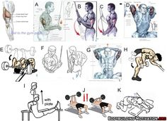 Personal Trainer - 11 Top Triceps Workouts