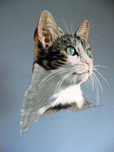 Que miras, mi gato? Elvira Marín Angulo - Artelista.