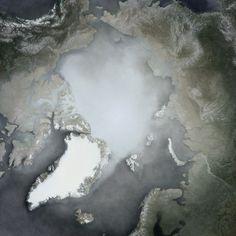 Arctic average
