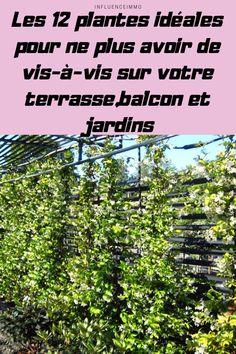Herb Garden, Garden Plants, French Cottage Garden, Garden Terrarium, Permaculture, Horticulture, Gardening Tips, Outdoor Gardens, Planting Flowers