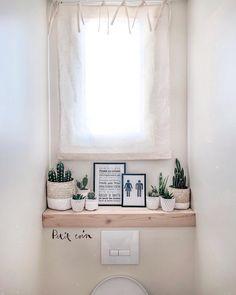 A C T U S. L O V E R. ⭐️ . Ne sont ils pas merveilleux mes petits cactus dans mes toilettes ?!? 😅 J'ai comme l'impression qu'ils s'y