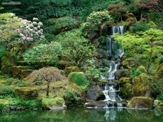 One of my favorite places in the whole world. This waterfall cascades down the hillside into a huge koi pond.     The Japanese Garden in Portland, OR.