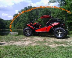 Come join us for our Buggy Tours!