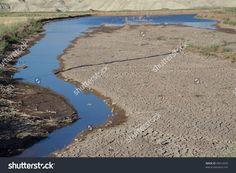 Image result for river in desert