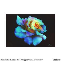 Blue Pastel Rainbow Rose Wrapped Canvas Large Canvas Print